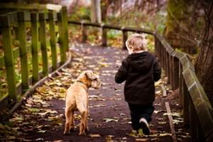 spirited child with dog