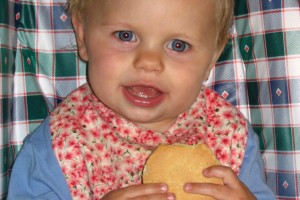Help! My Toddler is a Fussy Eater