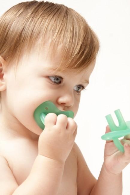 molar muncher