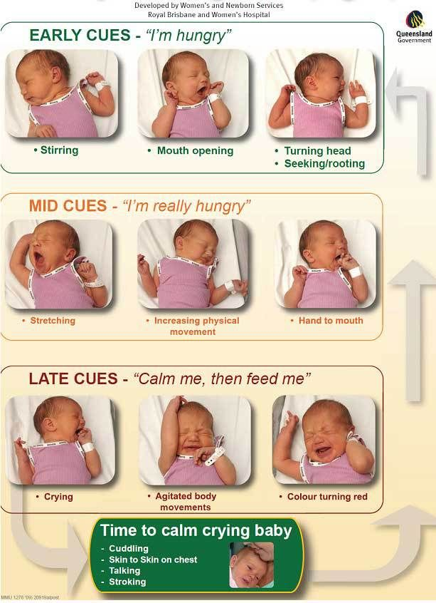 baby sleep cues