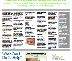 The High Need Baby Fact Sheet